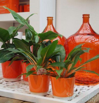 Kleur   Oranje in jouw interieur