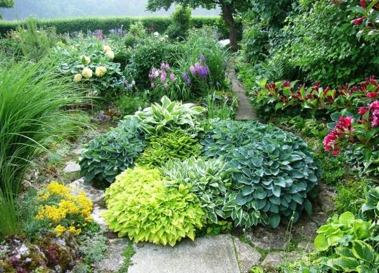 Tuin inspiratie low budget tuin en balkon tips for Tuin inrichten planten