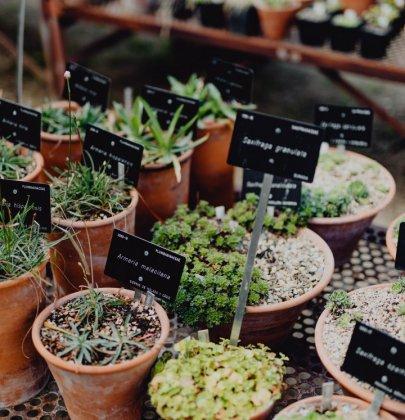 Tuin inspiratie | Tuinhuis op een leuke manier inrichten