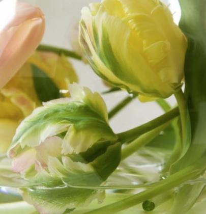 DIY   3x anders geschikt – 'Creatief met tulpen'