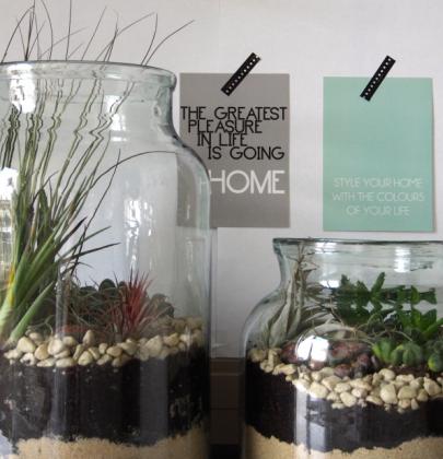 DIY   Woontrend! Maak je eigen mini tuin