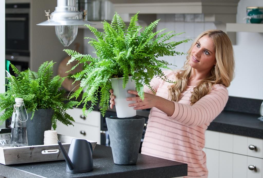 Woonnieuws planten zonder zorgen met aqua weeks stijlvol