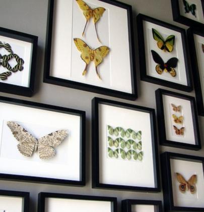 Interieur trends   Insecten als interieur decoratie