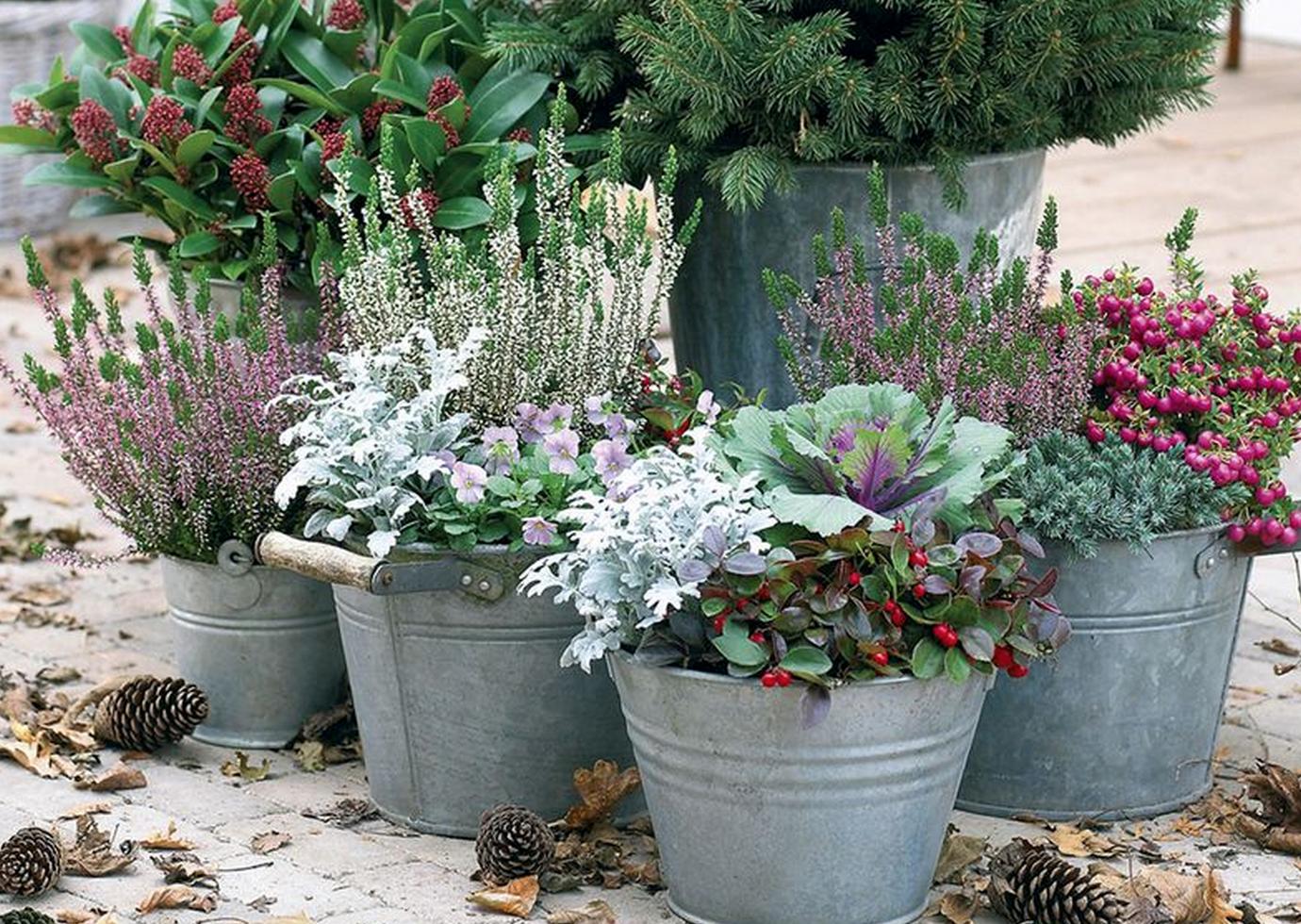 Buitenleven genieten van jouw herfst tuin stijlvol for Decoratie herfst