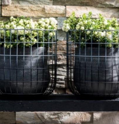 Tuin inspiratie | 9x de mooiste herfst tuinplanten
