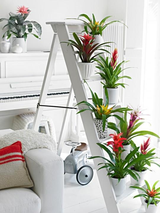 Groen wonen   Interieur in exotische sfeer met de Bromelia - Woonblog StijlvolStyling.com