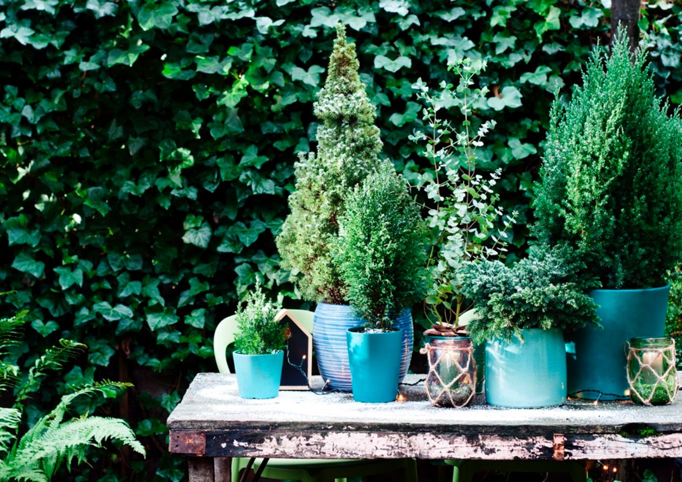 Wintertuin Archieven • Stijlvol Styling - Woonblog •