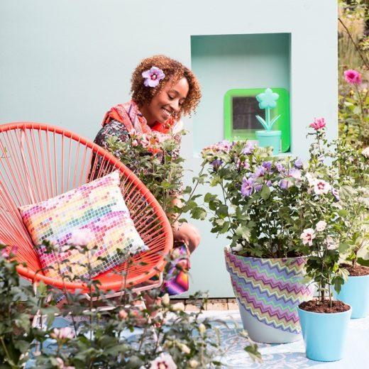 Buitenleven | Hibiscus = Terrasplant van het Jaar 2016 - Woonblog StijlvolStyling.com