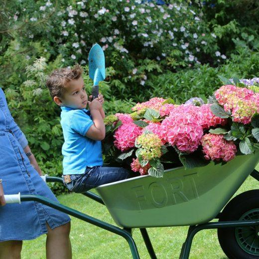 Buitenleven | Nationale tuinweek 2016 zet Nederland in bloei! - Woonblog StijlvolStyling.com