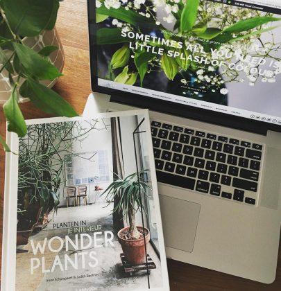 Review   Wonderplants – boek vol liefde voor groen in huis