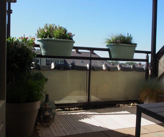Laat Je Inspireren Voor Een Sfeervol Terras Of Balkon Door: Pluimhortensia Brengt Kleur In De Tuin