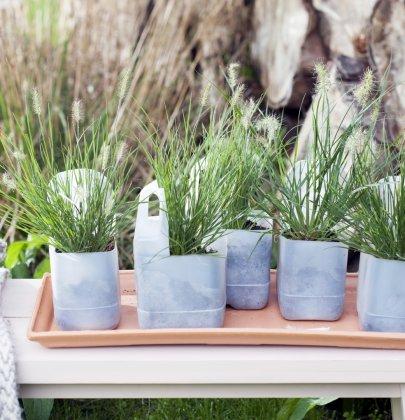 Buitenleven | Siergrassen in de tuin