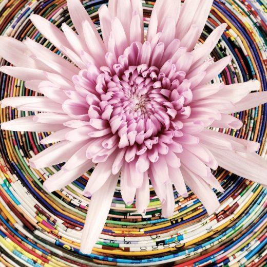 Groen wonen | Kleurrijke interieur boost met de Chrysant - Woonblog StijlvolStyling.com