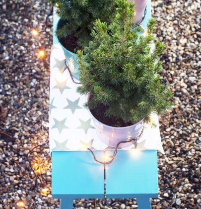Tuin inspiratie | Spar brengt het wintergevoel in huis & de tuin