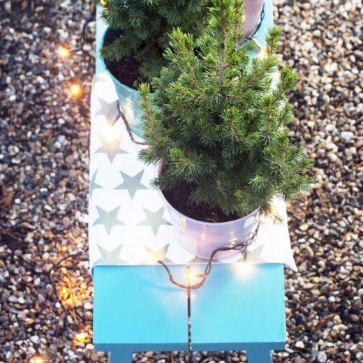 Buitenleven | Het kerstgevoel in de tuin met de Spar - Woonblog StijlvolStyling.com