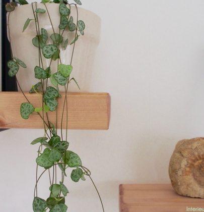 Interieur | Wandplank decoratie en styling tips