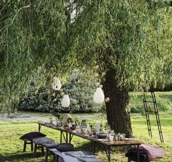 Tuin inspiratie | Tuintrend de Scandinavische tuin