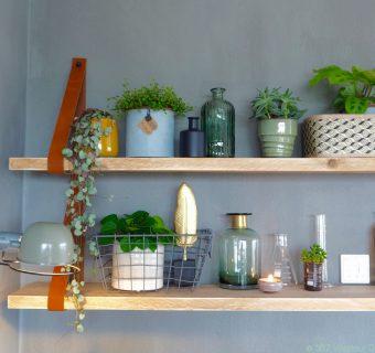 Binnenkijken   Susanne's 'urban jungle' thuiswerkplek