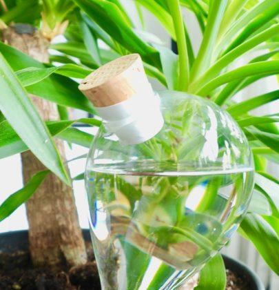 Groen wonen | Waterworks zorgt voor jouw planten