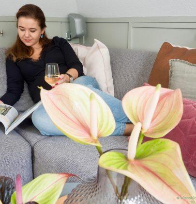 Lifestyle   Een welkom thuis gevoel creëren, hoe werkt dat?