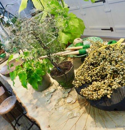 Woontrends   De boomstam tafel