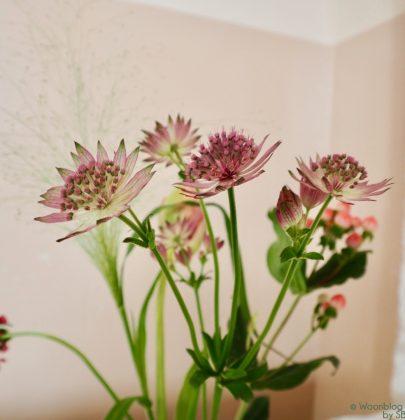 Wonen & seizoenen | De lente in je interieur