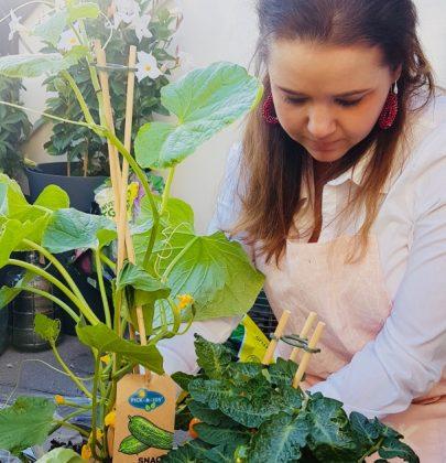 Tuin inspiratie | Groenten en fruit uit eigen tuin of balkon