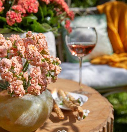 Tuin inspiratie   Kalanchoë – Makkelijke kleurrijke terras plant