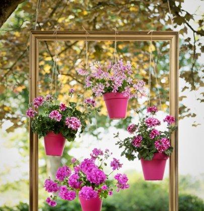 Buitenleven | DIY – Kleur in de lucht met Geraniums